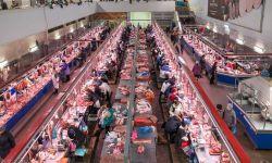 Rostov Meat Market Visit