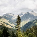 The mountains in Northern Abkhazia.