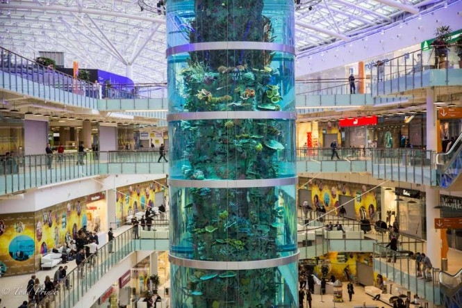 The aquarium is four stories high.