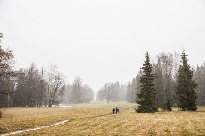 People walking toward the exit of Pavlovsk Park as the snow comes down.