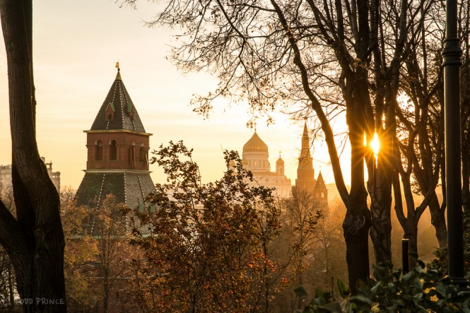 The setting sun peaks through two trees on the Kremlin grounds, sending its rays in all directions. Christ the Savior Church is in the centre with Kremlin towers to its left and right.