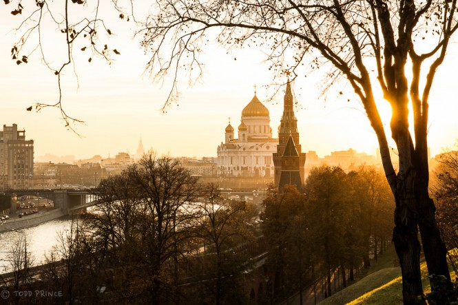 The setting sun is hidden by a tree inside the Kremlin grounds. The Moscow River runs its course to the left, passing Christ the Saviour Church in the centre.