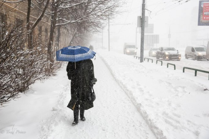 A woman walks down a street using an umbrella to block the snow.
