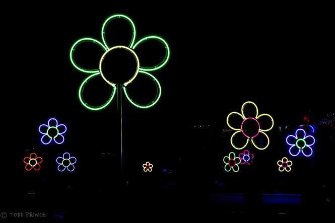 A flower-themed light installation at Park Tsaritsino.