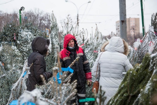 Russians buying New Year's trees on Dec. 31 on the streets of Moscow. The trees range from $20 to $400.