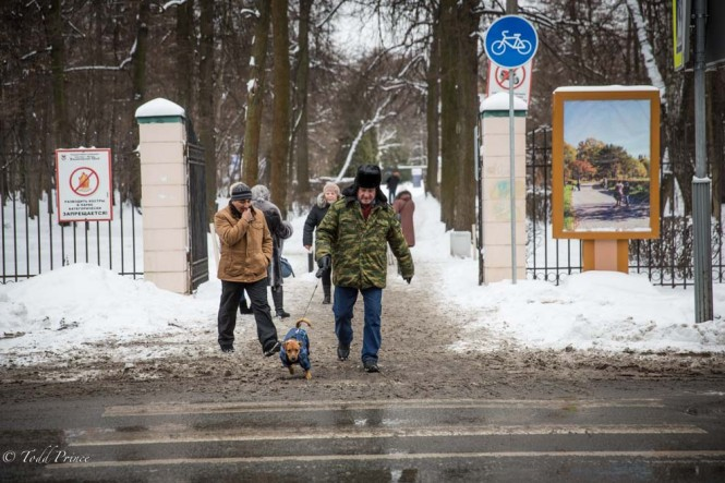 A man leaving Izmailovsky Park with his dog on New Year's day.