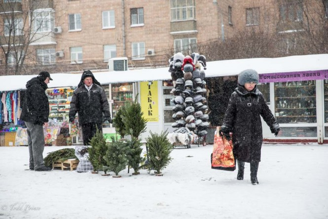 A Russian selling New Year's trees at an outdoor market on Dec. 31 amid snowfall.