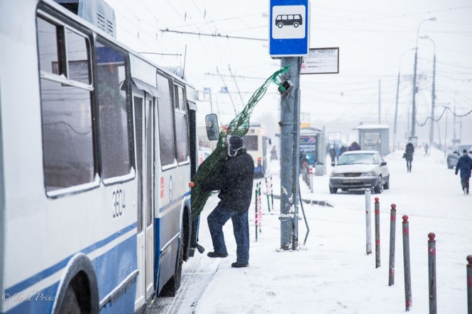 A Russian boarding a bus after buying the New Year's tree at an outside market.