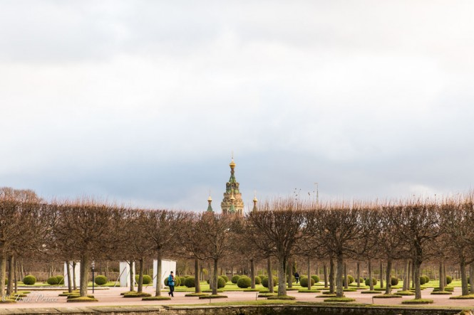 Dark clouds hang over the garden at Peterhof as a lone visitor wanders amid the leafless trees.