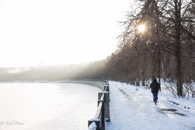 A young man jogs along the Moscow River as the sun peaks through the trees.